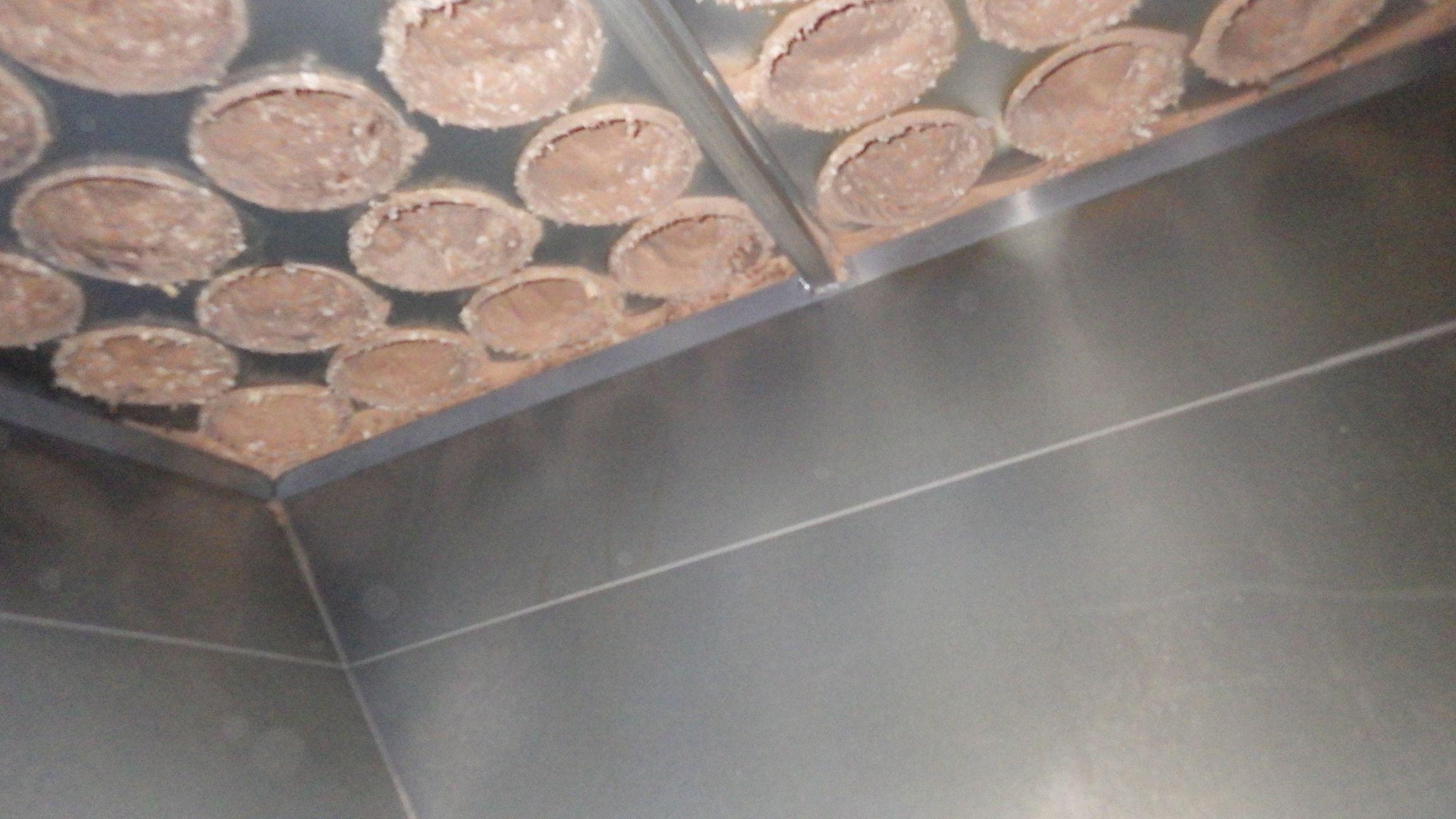 Biodécontamination et dépoussiérage dans un sillo